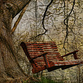 Tree Swing By The Lake by Deborah Benoit