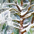 Tree With White Fluffy Snow by Jeelan Clark