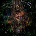 Tree Wizard by Bob Welch