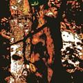 Tree Woman / 2 by Jean-Marie Bottequin