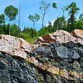 Trees Above The Pink And Grey Rock  by Lyle Crump