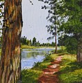 Trees Along The River by Judy Bradley