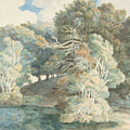 Trees By The Lake, Peamore Park, Near Exeter, Devon by Francis Towne