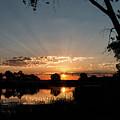 Trees Frame A Great Plains Sunrise by Tony Hake