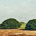 Trees On Field by Werner Lehmann