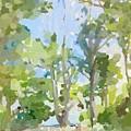 Trees On Ski Island, Banana River, Cape Canaveral, Fl. by Melissa Abbott