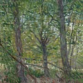 Trees Paris, July 1887 Vincent Van Gogh 1853  1890 by Artistic Panda