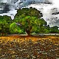Trees by Galeria Trompiz