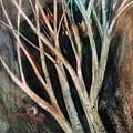 Trees That Tumble by Angela Cartner