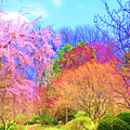 Trees With Color by Susanna Katherine