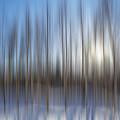 trees Alaska blue abstract by Pam  Elliott