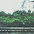 Trein by Trein