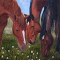 Tres Amigos by Jan Holman