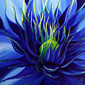 Tres Azul by Julie Pflanzer