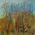 Tresors Des Mers by Annie  Rioux