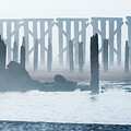 Trestle Bay by Robert Potts