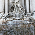 Trevi Fountain Rome by Munir Alawi