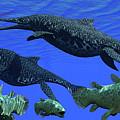 Triassic Shonisaurus Marine Reptile by Corey Ford