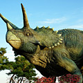 Triceratops by Michele Burgess