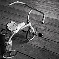 Tricycle In Black And White by Denise Bush