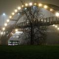 Tridge Fog by Lisa Jacob