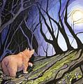 Trillium Moon by Pattie Anderson