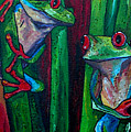 Trinity Of Tree Frogs by Patti Schermerhorn