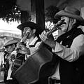 Trio Apaneca by Totto Ponce