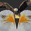 Triple Eagle by Bill Richards