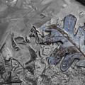 Triple Falls Leaf II by Dylan Punke