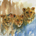 Triplets by Diana Jagitsch