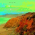 Trippin' To Cambria by FlyingFish Foto