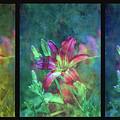 Triptych Lost Sunny Daylily Garden 1202 Lt_2 by Steven Ward