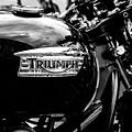 Classic Triumph Motor Bike by Georgia Fowler