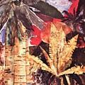 Tropic Blaze by Sharon Eng