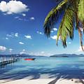 Tropical Beach by Dmitry Pichugin