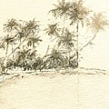 Tropical Beach Drawing by Anthony Fishburne