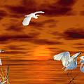 Tropical Birds And Sunset by Terri Mills