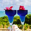 Tropical Cocktails by Tomas del Amo - Printscapes