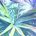 Tropical Dreams In Pastel Purple-blue by Susanne Van Hulst