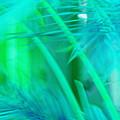 Tropical Dreams by Susanne Van Hulst