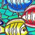 Tropical Fish Swim by Jim Harris