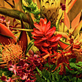 Tropical Flowers by Peggy Starks