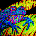Tropical Frog by Nick Gustafson