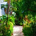 Tropical Garden Passage by Susie Shaw