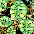 Tropical Haze Noir Variegated Monstera Leaves, Golden Palm Fronds On Black by Tina Lavoie