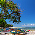 Tropical Island Panorama Paradise by James BO Insogna