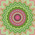 Tropical Kaleidoscope by Joy McKenzie