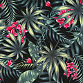 Tropical Leaf Pattern  by Stanley Wong