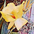 Tropical Lilly by Steven Wills